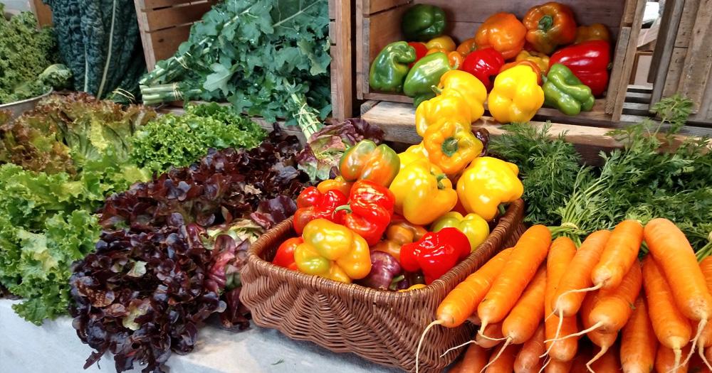 Các loại rau màu