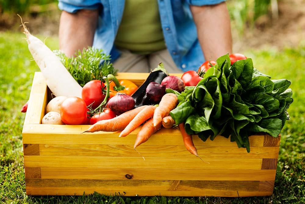 """Thực phẩm hữu cơ không phải là thực phẩm """"trồng tại nhà"""""""